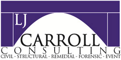 LJ Carroll Consulting